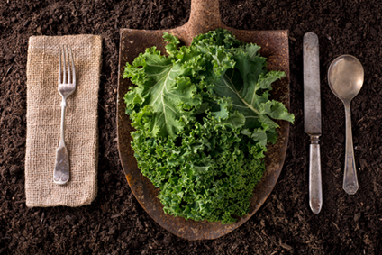 Healthy_eating_concept_of_kale